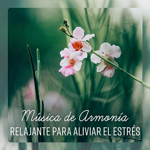 Música de Armonía Relajante para Aliviar el Estrés ...