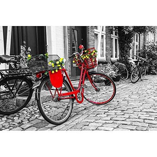 MTAMMD Puzzles Puzzle 500 1000 Piezas Bicicleta Roja Rompecabezas para Adultos Bicicleta Roja Rompecabezas con Flores En La Calle En Blanco Y Negro-1000Pieces
