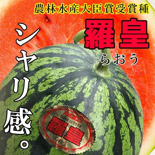 熊本県産 羅皇 らおう 高級 大玉すいか (1玉入り 1玉当たり約7kg〜)