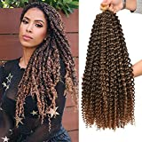 AliRobam 6packs Ombre Black Brown Passion Twist Crochet Hair 18 Inch Bohemian Curly Braids Water Wave Hair for Braiding Hair 22 Strands/pack Synthetic Fiber Hair Extensions (18INCH, T27)
