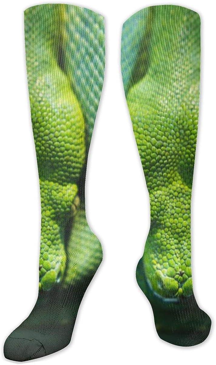 Green Tree Python Knee High Socks Leg Warmer Dresses Long Boot Stockings For Womens Cosplay Daily Wear
