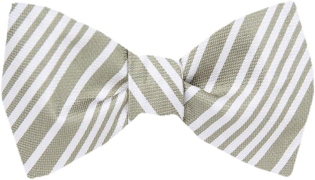 FBTZ-1029 - Men's Silk Self Tie Bowtie Tie Yourself Bow Ties
