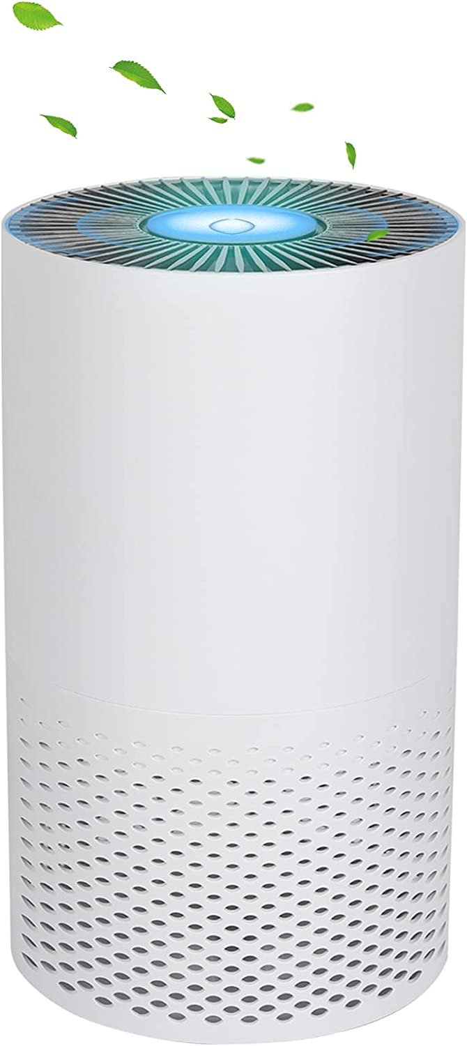 B-COOLTHING Air Purifier for Large Se New product type Ranking TOP6 with Quality Room Auto