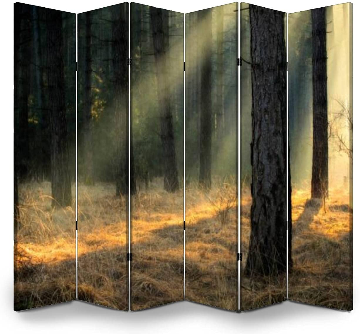6 Panels Max 64% OFF Room Divider Screen Partition Easy-to-use Light in Pine T Amazing a