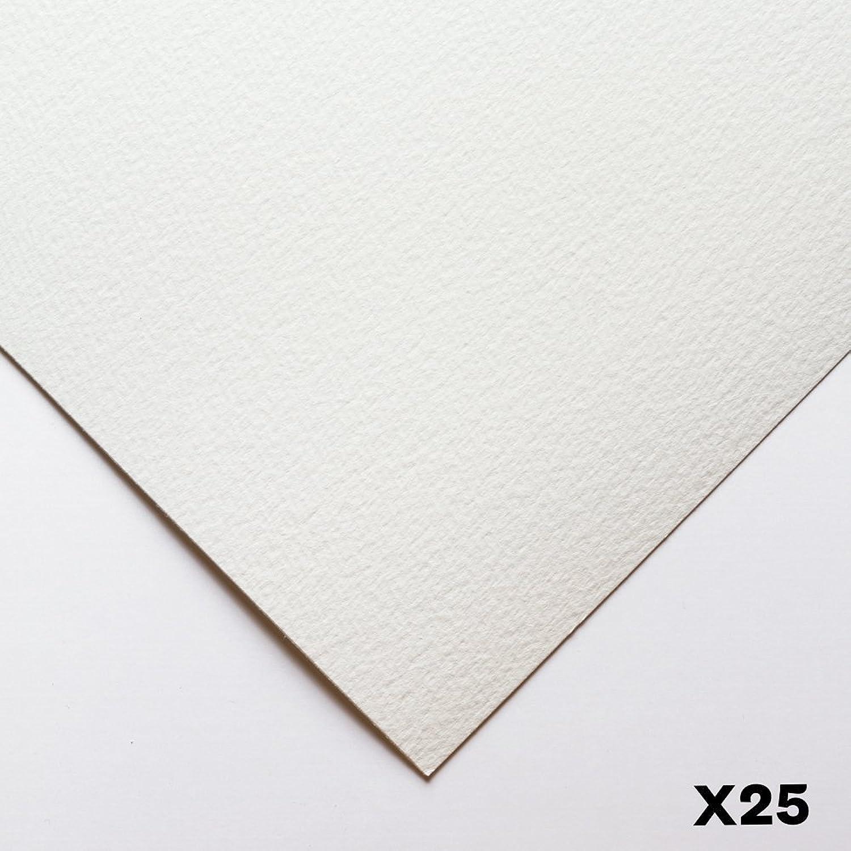 Bockingford   140lb   300gsm   22x30in   25 Sheets   Rough B005WJTZO6  | Bestellung willkommen