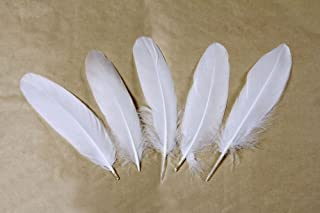 Goose feather,Hgshow 100Pcs beautiful feathers 6-8 inches 15-20 cm, choose color Useful charming