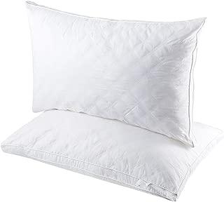 Best soft feather pillows Reviews