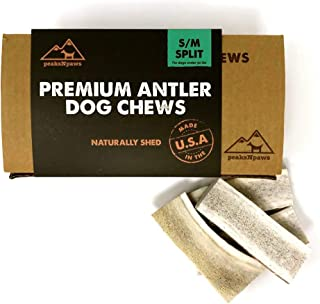 Best are elk antlers good for dogs Reviews
