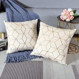 Artscope Juego de 2 fundas de almohada de terciopelo suave con diseño geométrico dorado para sofá, cama, hogar...