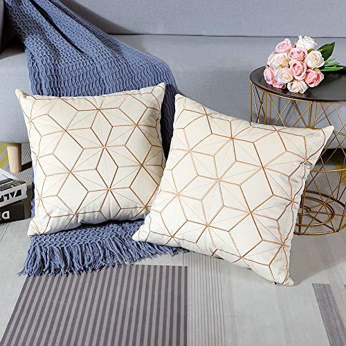 Artscope Juego de 2 fundas de almohada de terciopelo suave con diseño...