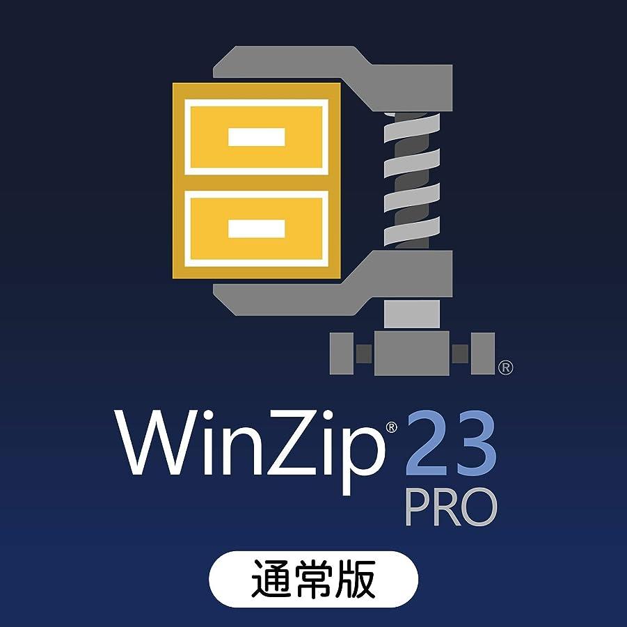 リラックス租界整然としたWinZip 23 Pro 通常版 ダウンロード版