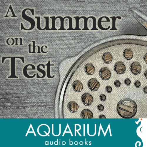 A Summer on the Test audiobook cover art