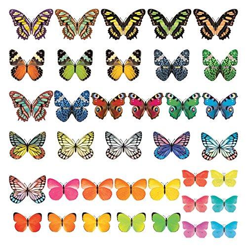 DECOWALL DS-8025 Vividi Farfalle (Piccolo) Adesivi da Parete Decorazioni Stickers Murali Soggiorno Asilo Nido Camera Letto per Bambini decalcomanie