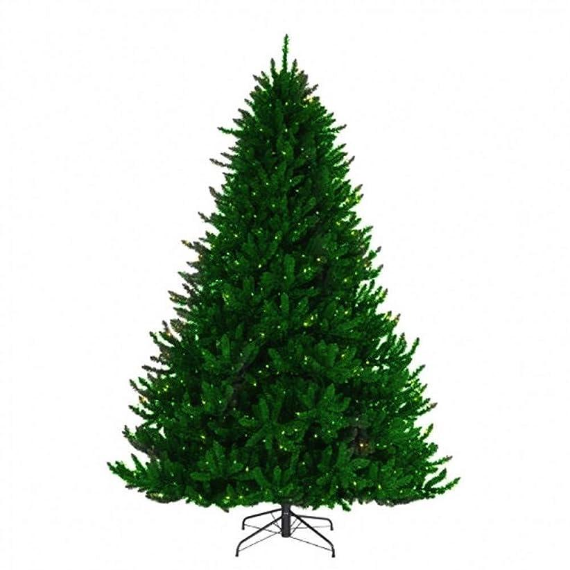 母音遺伝子無駄にYSYYSH グリーン家族のクリスマスツリー1.2M / 3.0M、明るいクリスマスツリーの暗号化、PVC材料クリスマスショッピングセンター、家の装飾 誕生日パーティー (Color : 1.2m)