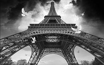 Papel pintado tejido no tejido - Paisaje gris de la torre eiffel 200x150 cm - 4 tiras Fotomurales Decoración de Paredes Modernas para Salón Dormitorio Despacho Pasillo Decoración