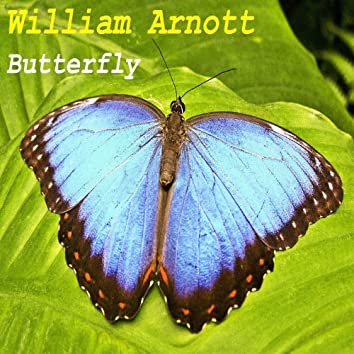 Butterfly (Rain Mix)