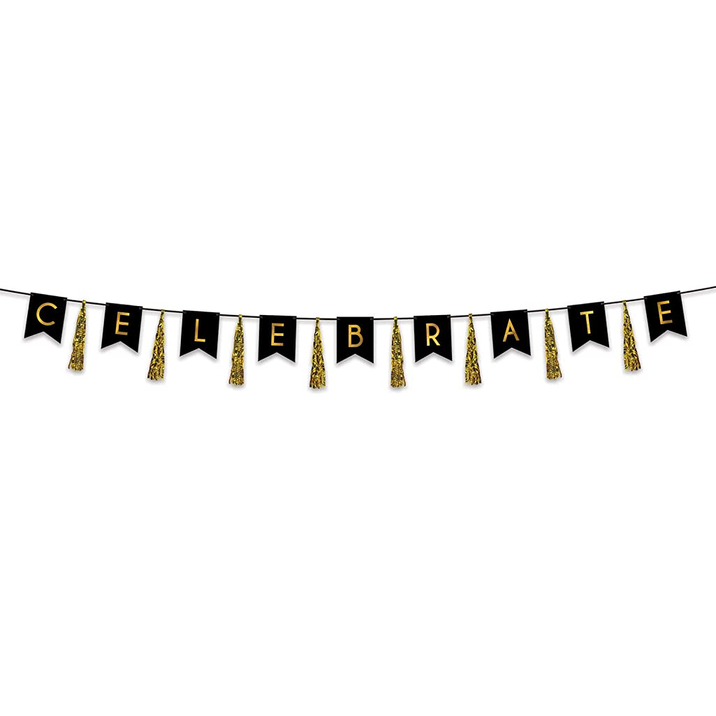 Beistle 53466 Celebrate Tassel Streamer, 13