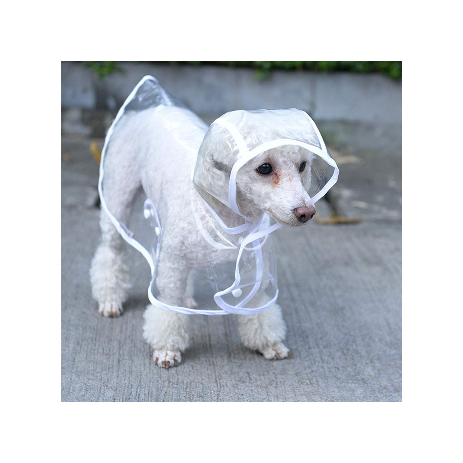 Amazon Com Hey Warm Home Waterproof Dog Clothes Raincoat Transparent Rain Coat Pet Dog Clothes Small Dogs Chihuahua Clothing White L Kitchen Dining