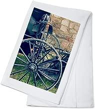 3D Rose Amish Buggy by Angelandspot TWL/_178086/_1 Towel 15 x 22 Multicolor