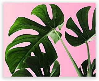 Humble Chic Wall Art Prints - Unframed HD Printed Modern Picture Poster Decorations for Home Decor Living Dining Bedroom Kitchen Bathroom Office Dorm Room - Monstera Palm Plant Leaf, 8x10 Horizontal
