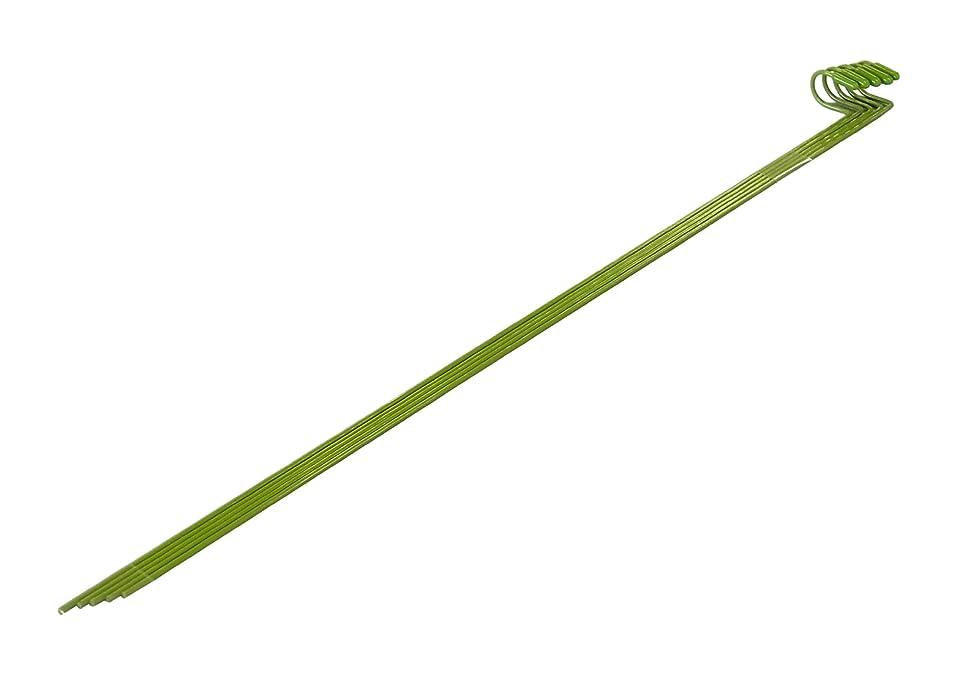 炭素流用するやさしい石黒商事 洋ラン支柱パフィオ 5PC 1.8×400PF