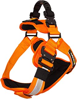 Best safety harness walmart Reviews