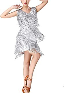 Sequin Fringe 1920s Themed Costumes Clothing Great Gatsby Dresses for Women Adult Silver