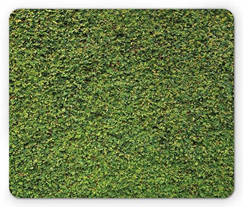 Buchsbaum Hecken Maus Pad, Laub Erwachen Natur Frühling Blätter Busch Strauch Grün Erfrischendes Grün, Rechteck rutschfest Gummi Mousepad, Standard Grün