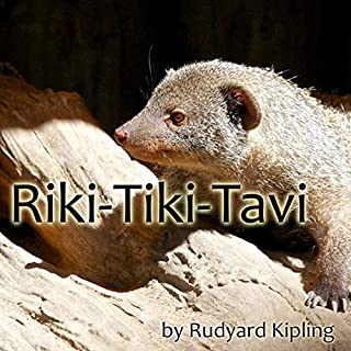 Riki-Tiki-Tavi cover art