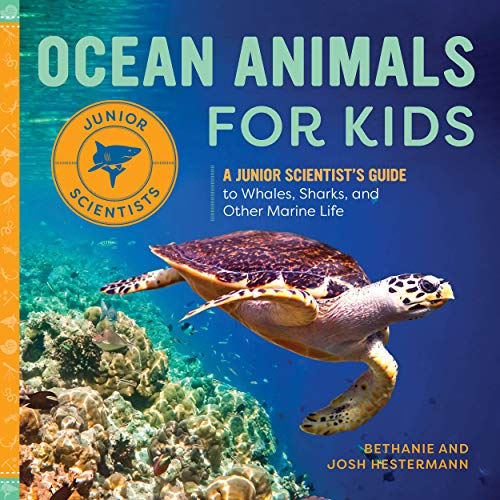 Ocean Animals for Kids: A Junior Scientist's Guide to Whales, Sharks, and Other Marine Life