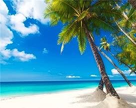 AOFOTO 10x8ft Sea Beach Photography Background Hawaiian Luau Seaside Palmtree Backdrop Vacation Trip Blue Sky Summer Holiday Boy Girl Lovers Adult Portrait Wedding Photo Studio Props Vinyl Wallpaper