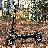 Vici Trottinette Électrique Tout Terrain [Moteur de 500W ou 1000W] | Scooter Electrique pour Adulte...