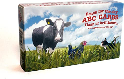 Abc Flash voitureds with American Sign Language By the Flash of Brilliance by Flash of Brilliance