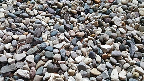 5 lbs. of Small River Pebbles (Triple Washed) from Northern Michigan Succulents, Cactus or Bonsai, Fairy Gardens, Terrariums | Safe & Non-Toxic