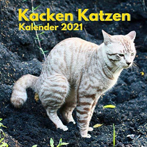 Kacken Katzen Kalender 2021: Lustige Geschenke für Katzenbesitzer, Weihnachten, Neujahr, Katzenliebhaber