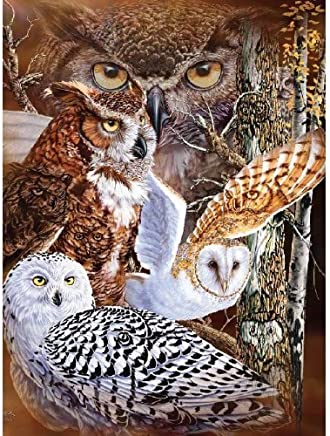 featured product Crover 48-XE73-WTUQ 11 Owls Super Soft Plush Queen Size Blanket By Gardner Multicolor