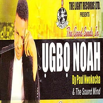 The Goods Seeds in Ugbo Noah