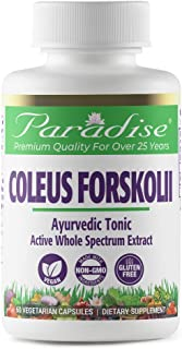 Paradise Coleus Forskolii - 10% Forskolin Extract - 100% Naturally Concentrated - Traditionally Ayurvedic Herb