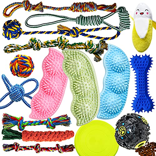 Dog Chew Toys for Puppies Teething, Dog Toys 16 Pack Puppy Chew Toys Pea Shaped Rubber Bone Dog Toy Bundle Dog Squeaky Toys iq Treat Ball Puppy Teething Chew Toys Small Dogs Puppy Toys