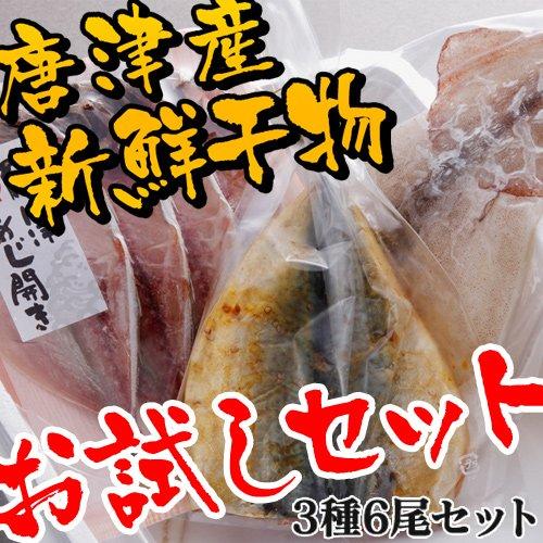 ノーブランド品 干物セット 佐賀県唐津産 (3種6尾、あじ さば するめ)