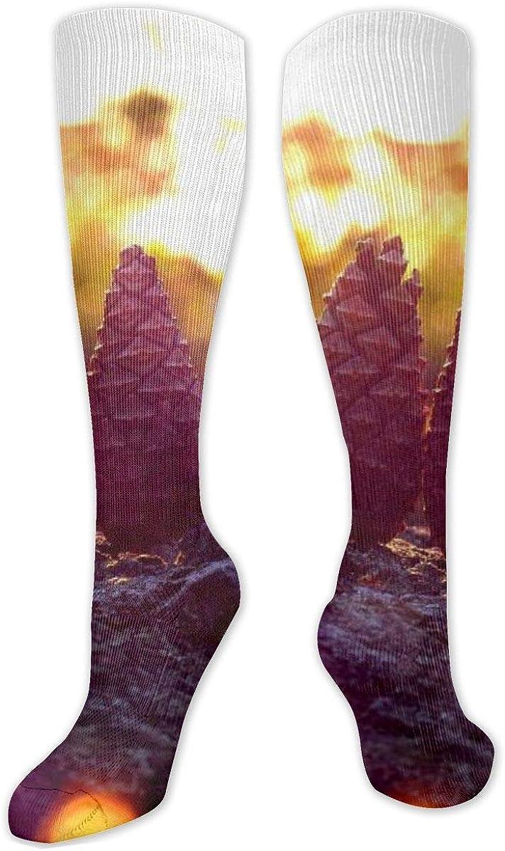Forest Sky Warm Sunlight Leaf Knee High Socks Leg Warmer Dresses Long Boot Stockings For Womens Cosplay Daily Wear