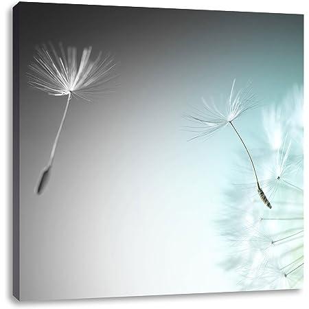 Wandbild LED Bild beleuchtet Pusteblume 40 cm x 40 cm Leinwandbild