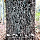 Baum Meditation: Stille und Energie mit der Visualisierung eines Baumes, Teil 5