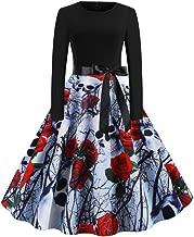 Women's Halloween Audrey Hepburn Retro Skull Pumpkin Long Sleeve Empire Waist Vintage Gown Flared Swing Pleated Dress