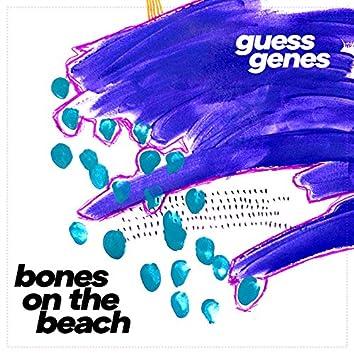 Bones on the Beach