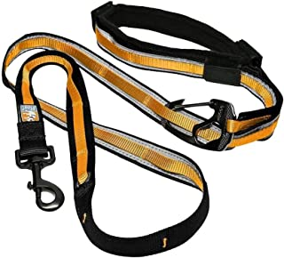 Kurgo 6 in 1 Hands Free Dog Leash |Reflective Running Belt Leash for Dogs |Crossbody & Waist Belt Leash |Carabiner Clip |P...