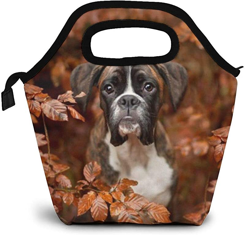 GuwyPqbus Boxer Dogs Autumn Lunch Box Insulated Lunch Tote Bag Lunch Organizer Lunch Holder Lightweight Waterproof And Reusable Black