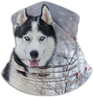 Lsjuee Mezza, ghetta, sciarpa tubolare, copricapo resistente, passamontagna, bandana, cane husky occhi azzurri scaldacollo...