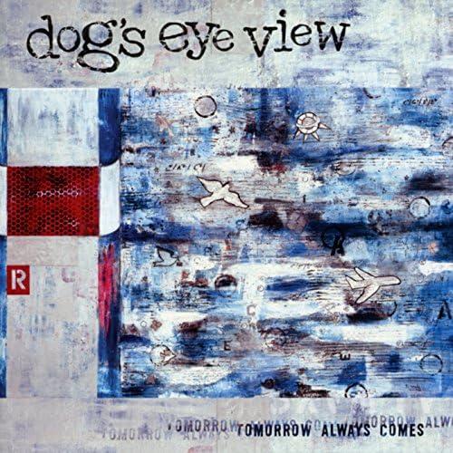 Dog's Eye View