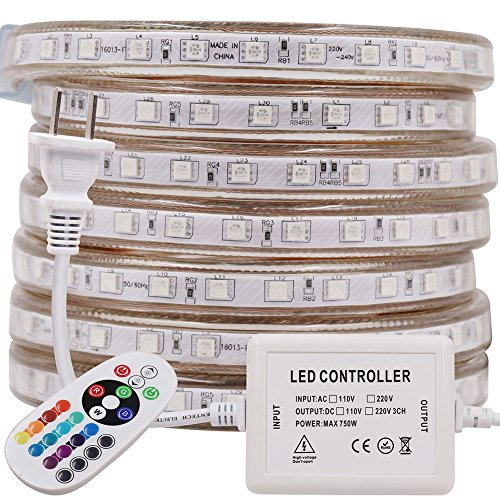 XUNATA High Voltage LED RGB Rope Strip Lights, AC 110V-120V 60 Units SMD 5050 LEDs Remote Control Multi-Color Changing Waterproof Flexible Strip Lights for Indoor Outdoor Christmas Decoration(3.3ft)